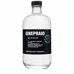 Gin Ginepraio Amphora Navy Strenght