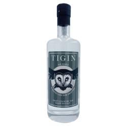 Gin TIGIN