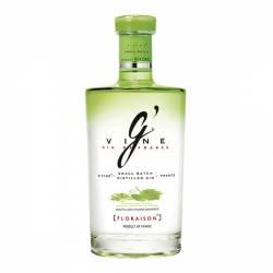 Gin G Vine Floraison